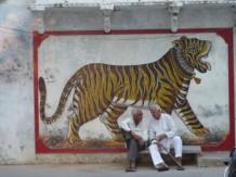 Jaipur rugs (2)