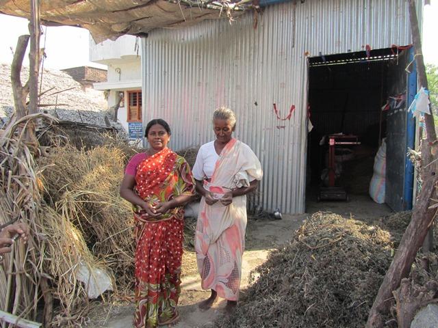 Gram Mooligai Company: een nieuwe klant in de medicinale planten