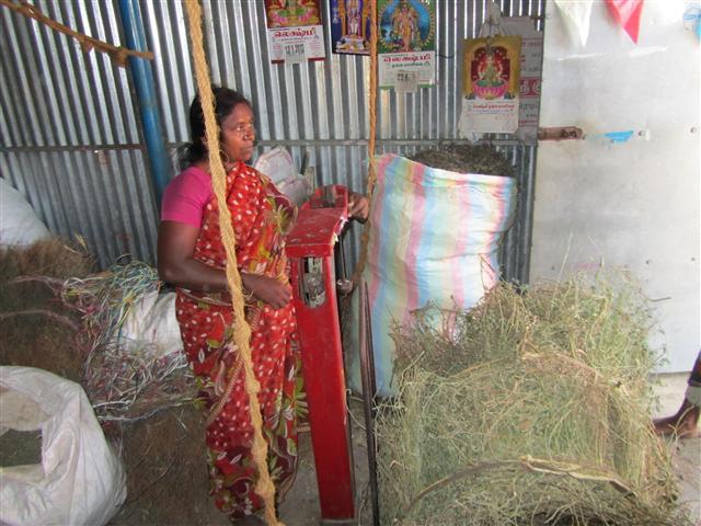Great opportunities for Gram Mooligai through trends such as wellness