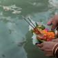 Hindoewijzer-3-nov-2012_-Spiritualiteit-van-rituelen_595x-595x335_1024