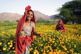 International Diaspora Conference celebrates rural women