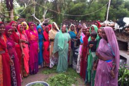 Striving for inclusive growth of India's villages