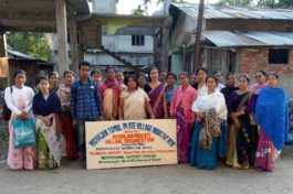 Green dinnerware generates employment for women in Assam