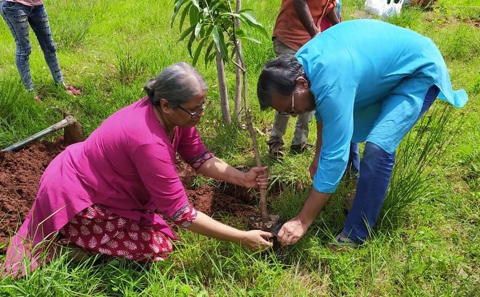 Planting saplings to compensate global footprint