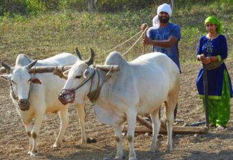 GramHeet re-imagines rural economy
